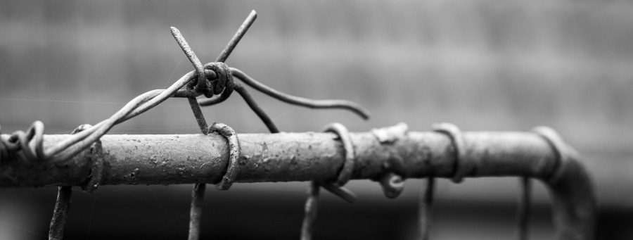 barbed-wire-1726288_1920