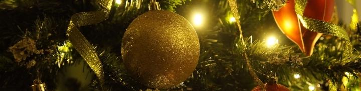christmas-tree-708002_1920.jpg